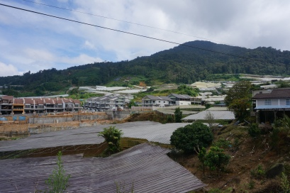 Mit Plastikdächern überzogene Felder